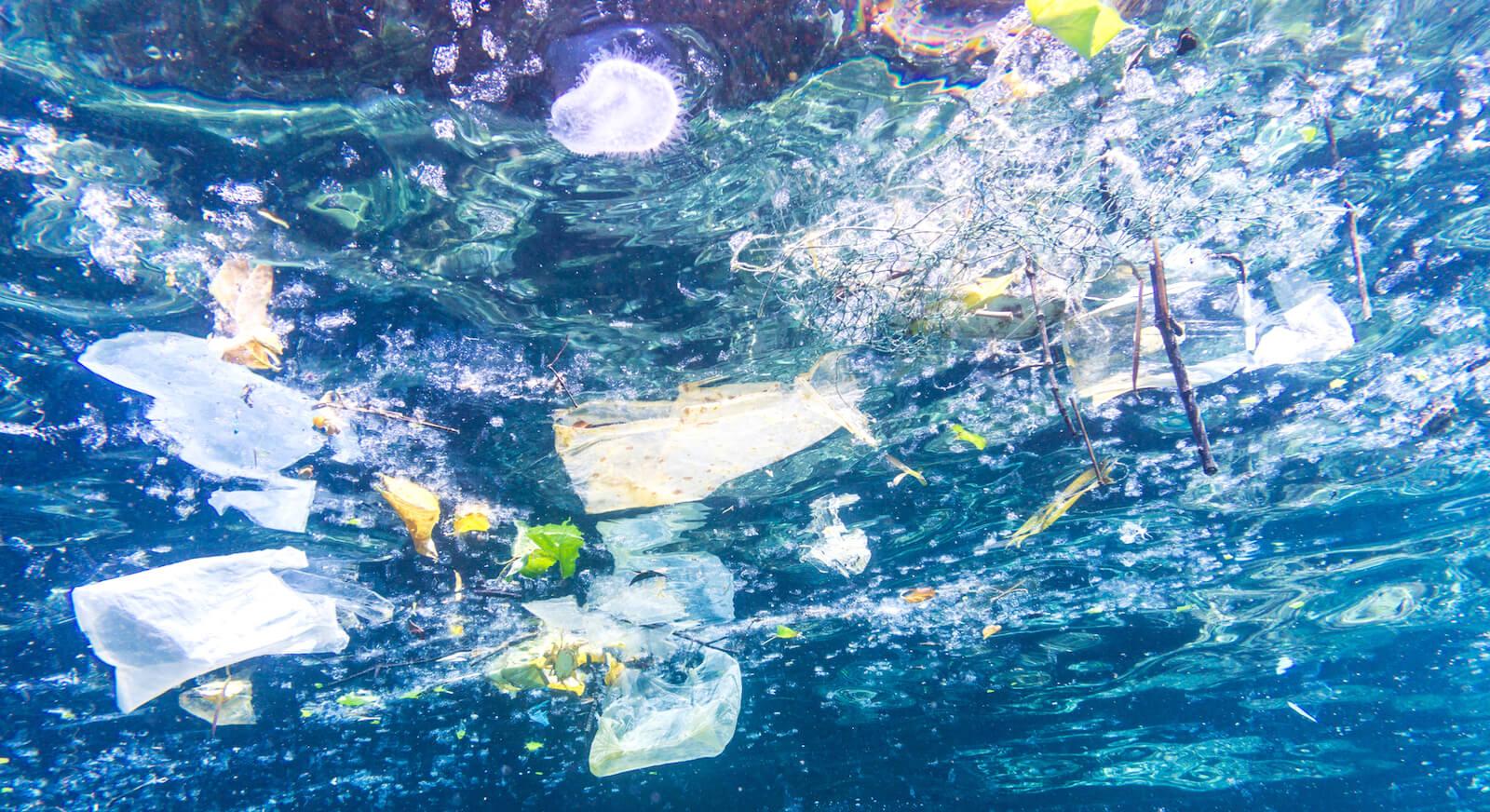 Svensk plast skräpar ned världshaven – Sveriges Natur